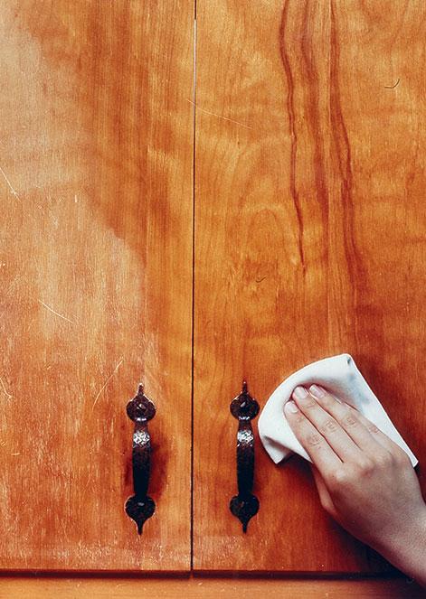 Feed N Wax Wood Polish Conditioner
